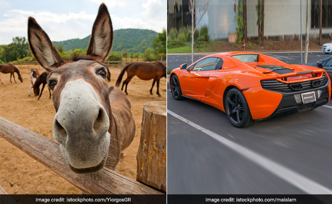 Hungry Donkey Bites Into Carrot-Coloured McLaren, Causes $6,800 In Damage