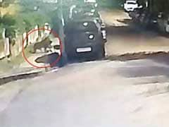 सोसायटी में घुसे तेंदुए ने किया कुत्ते का शिकार,  CCTV में कैद हुई तस्वीर