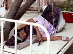 मध्य प्रदेश: अस्पताल में नहीं मिली जगह, पेड़ के नीचे किया गर्भवती महिला का इलाज