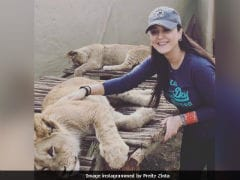Preity Zinta Trolled For Pic With Lion Cub, Retorts 'Not Everything's A Conspiracy'