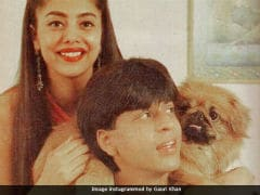 Shah Rukh Khan And Gauri In Old Pic From 90s. No Filter Needed