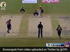 Watch: Bowler's Bizarre Protest After LBW Appeal Is Turned Down