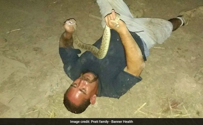 A Man Wrestled A Rattlesnake To Show Off. He Was Bitten In The Face And Nearly Died.