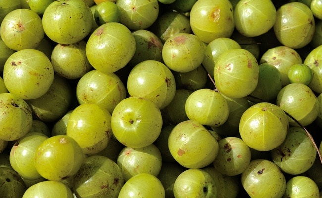 amla is rich in nutrients and minerals