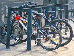 Engineer Stole Bicycles From IIT Bombay, Used To Sell Them Online. Arrested
