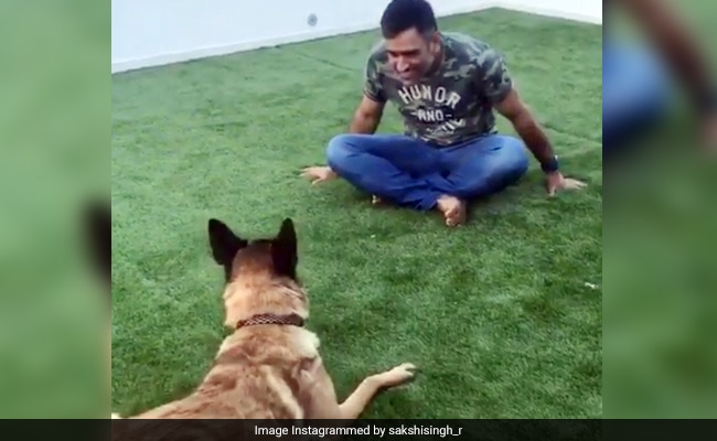 Video Of MS Dhoni Playing With His Dog Will Make Your Morning Better