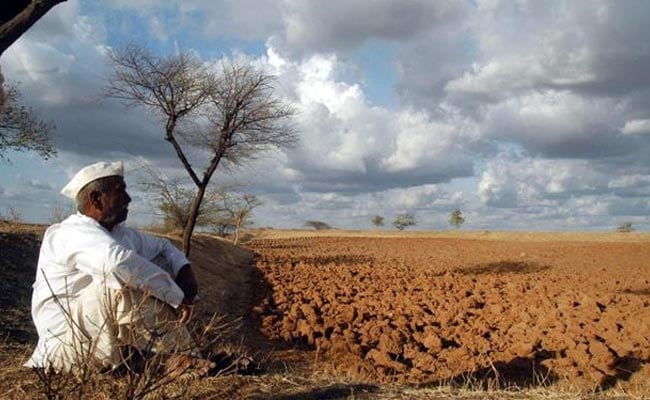 Rajasthan Allots Rs 1,325 Crore For Drought-Affected Farmers