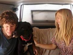 This German Couple On World Tour Lost Their Dog On Marina Beach. Chennaites Help Find Him