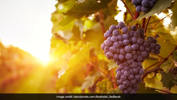 Grapes Nutrition Amazing Nutritional Facts About Grapes And Health Benefits Ndtv Food