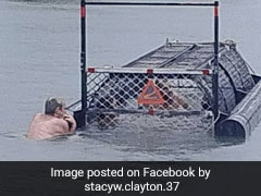 'Idiots Of The Century' Swim In Baited Crocodile Trap