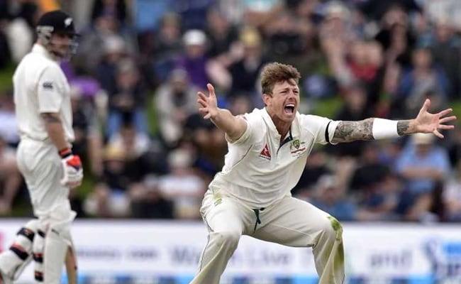 एशेज से पहले ऑस्ट्रेलिया टीम को झटका, पीठ की चोट के कारण जेम्स पैंटिसन बाहर हुए