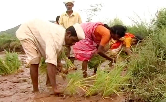 Farmers' Daughters In Maharashtra Village Protest, Demand Loan Waiver