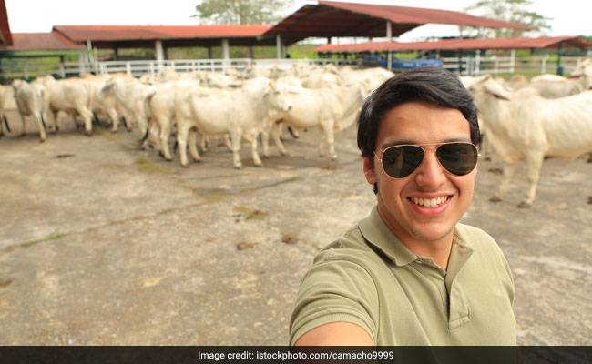 Click A 'Cowfie': Kolkata NGO's Unique Campaign To Save The Animal