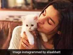 World Animal Day पर आलिया, रणदीप और आदिति ने दिखाया अपना Animal Love