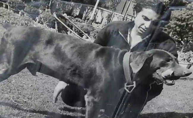 'Prince' Of Oudh Dies Lonely In His Jungle Palace In Heart Of Delhi