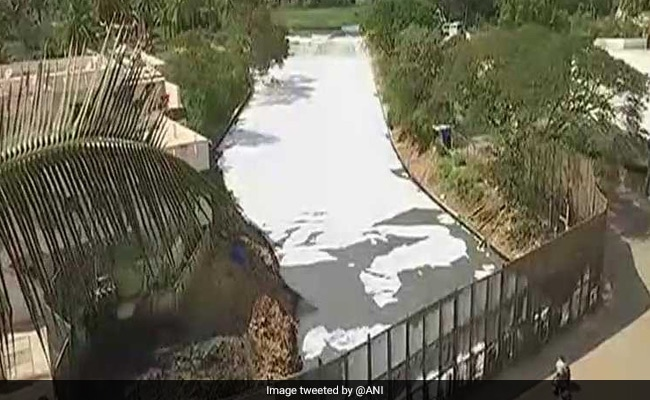 Green Court Raps Karnataka Over Bellandur, Forms Panel To Inspect Lakes