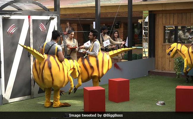 Bigg Boss 11, November 15, Written Update: Dinosaurs Vikas, Puneesh And Luv Tyagi Wreak Havoc