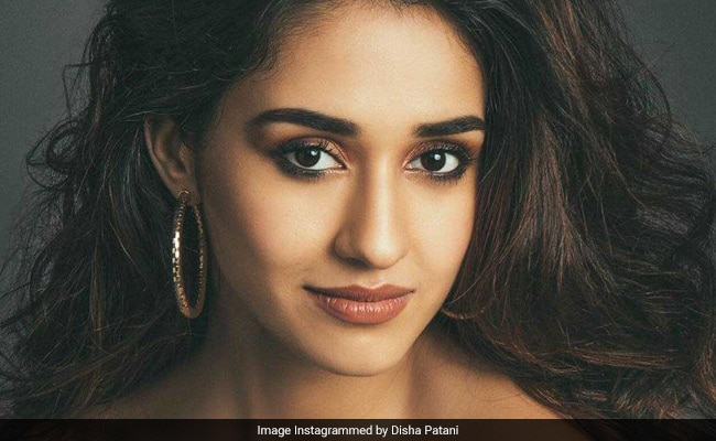 Disha Patani Trolled For Latest Pics, Told 'Don't Expose So Much'