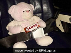 Teddy Bear Flown Over 300 Kms To Be Reunited With Little Girl