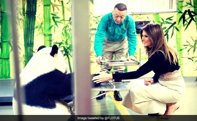 Internet Goes Gaga Over Melania Trump's Meeting With Panda Named Gu Gu