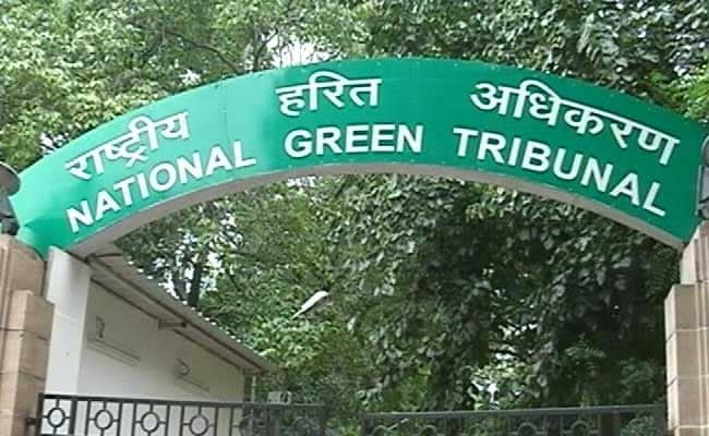 Green Court Seeks Report On Illegal Construction In Mayapuri Greenbelt