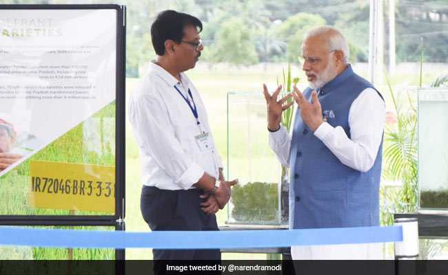 pm modi irri scientist twitter