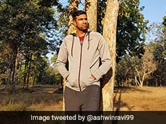 Ravichandran Ashwin Basks In Nature