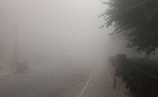 Smog Effect: Punjab Shuts Schools For 3 Days In View Of Road Accidents