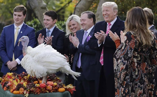 Told Pardons Granted To Turkeys By Obama Cant Be Revoked, Quips Trump