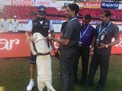 VIDEO: ग्राउंड पर दिखा DOGGY तो देखिए क्रिकेट छोड़ क्या करने लगे कोहली