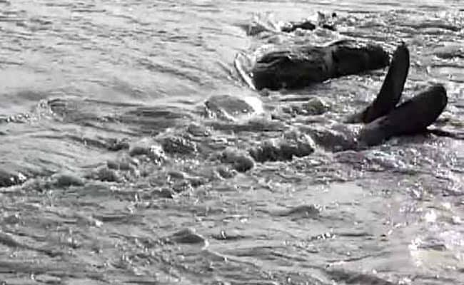 चीन ने ब्रह्मपुत्र नदी के काले पानी के लिए भूकंप का बनाया 'बहाना'