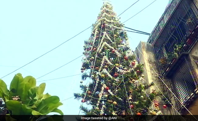65 ft tall christmas tree cynosure of all eyes in mumbai - 65ft Christmas Tree
