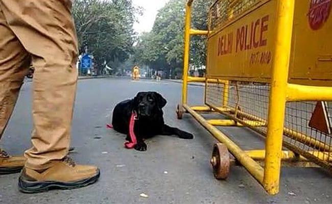दिल्ली के खान मार्केट में बम ब्लास्ट की धमकी, पुलिस ने शुरू किया तलाशी अभियान