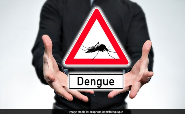 18 Fresh Dengue Cases At Year End; Here's How You Can Save Yourself Naturally!