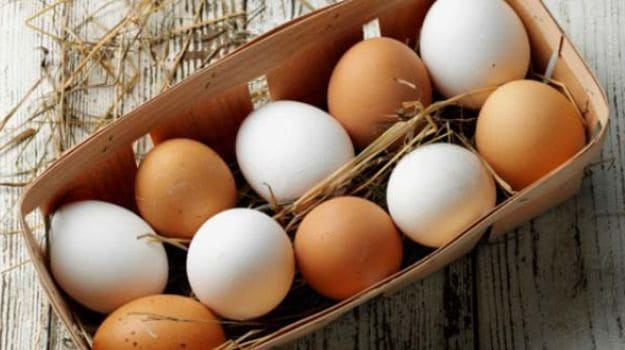 eggs are rich in vitamin b12