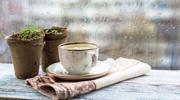 Ayurvedic Drink Warm Milk Cardamom