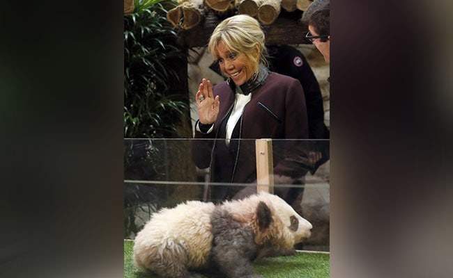 'Godmother' Brigitte Macron Names France's First Baby Panda