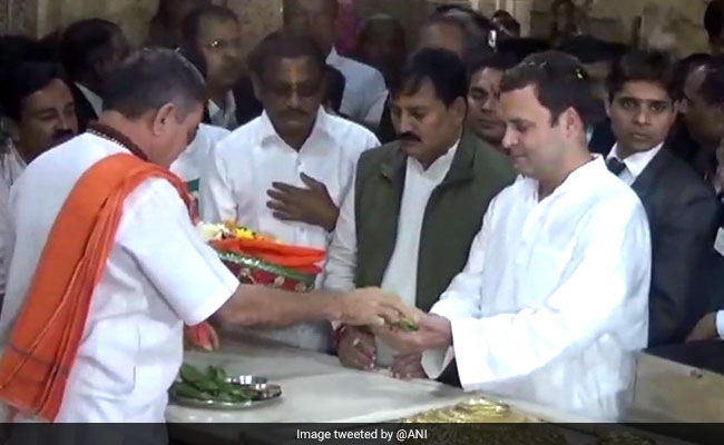 Rahul Gandhi Gujarat Visit Highlights: Congress Chief Offers Prayers At Somnath Temple, Will Review Election Result Next
