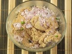 Mutton Shami Kebab