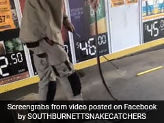 4-Foot Venomous Snake Was Curled Up Inside Box. Watch How It Was Captured