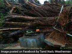 Cyclone Ockhi Live Updates: 7 Dead In Kerala And 6 In Tamil Nadu; Lakshadweep On Red Alert