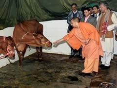 Yogi Adityanath Government Drops 22-Year-Old Case Against Yogi Adityanath