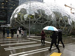 Why Amazon Built Its Workers A Mini Rain Forest Inside Three Domes In Downtown Seattle