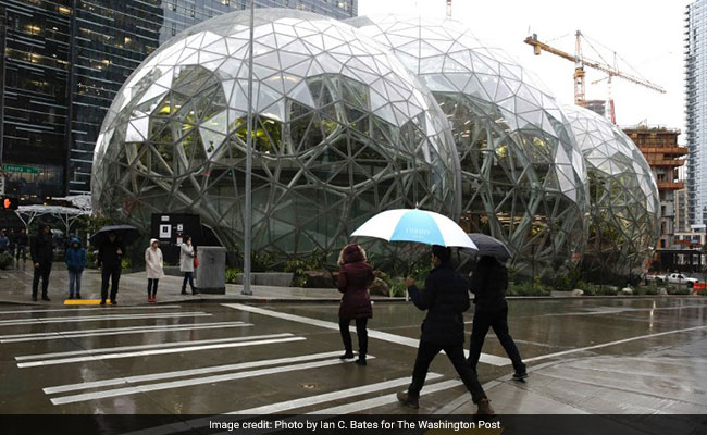 Why Amazon Built Its Workers A Mini Rain Forest Inside: built in seattle