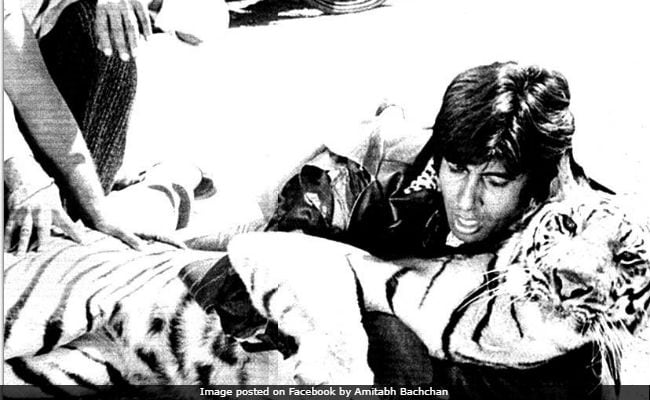 Amitabh Bachchan Reposts Khoon Pasina Pic With Tiger, Adds This Abhishek Detail