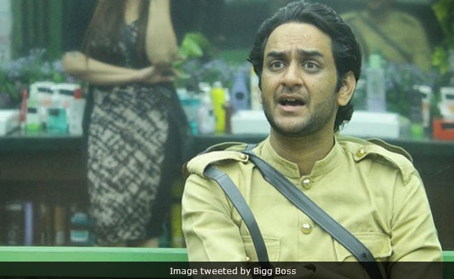 Bigg Boss 11, January 12: Clash Between 'Dictator' Vikas And 'Sherkhan' Hina
