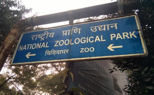 First Case Of Bird Flu Detected In Delhi Zoo