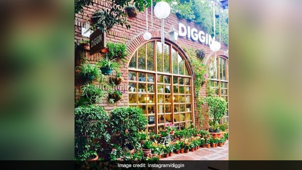 These Insta-Worthy Cafes In Delhi Are A Visual Treat
