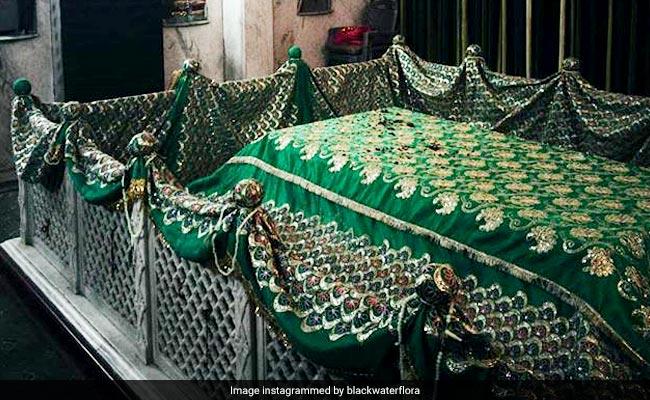 इस्लाम धर्म में हरे रंग को क्यों माना जाता है पाक, जानिए इसका महत्व