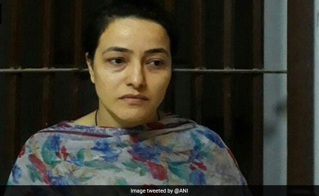 Charges Framed Against Honeypreet Insan, Ram Rahim's 'Daughter', Over 2017 Panchkula Violence Case